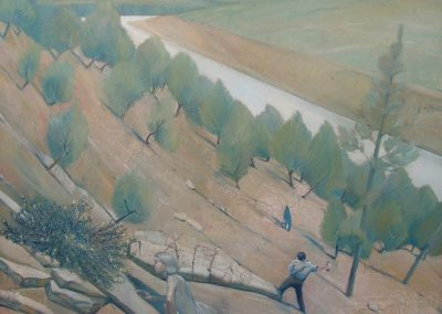'The Last Hakea pulvineferia, Keepit Dam on the Namoi River Northern NSW', oil on canvas.  95 x 92 cm